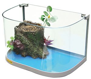 Tartarughiere ed accessori for Lampada tartarughiera